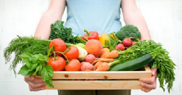 القواعد الأساسية لحفظ الطعام